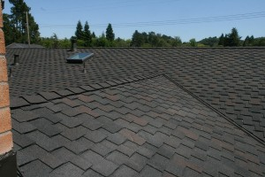 bay area roofing contractor near me